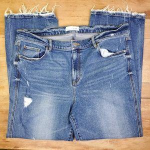 Loft | Vintage Straight Ankle Jeans 14